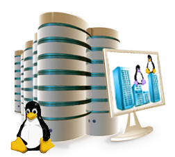 Linux Dedicated Server Hosting Ahmedabad